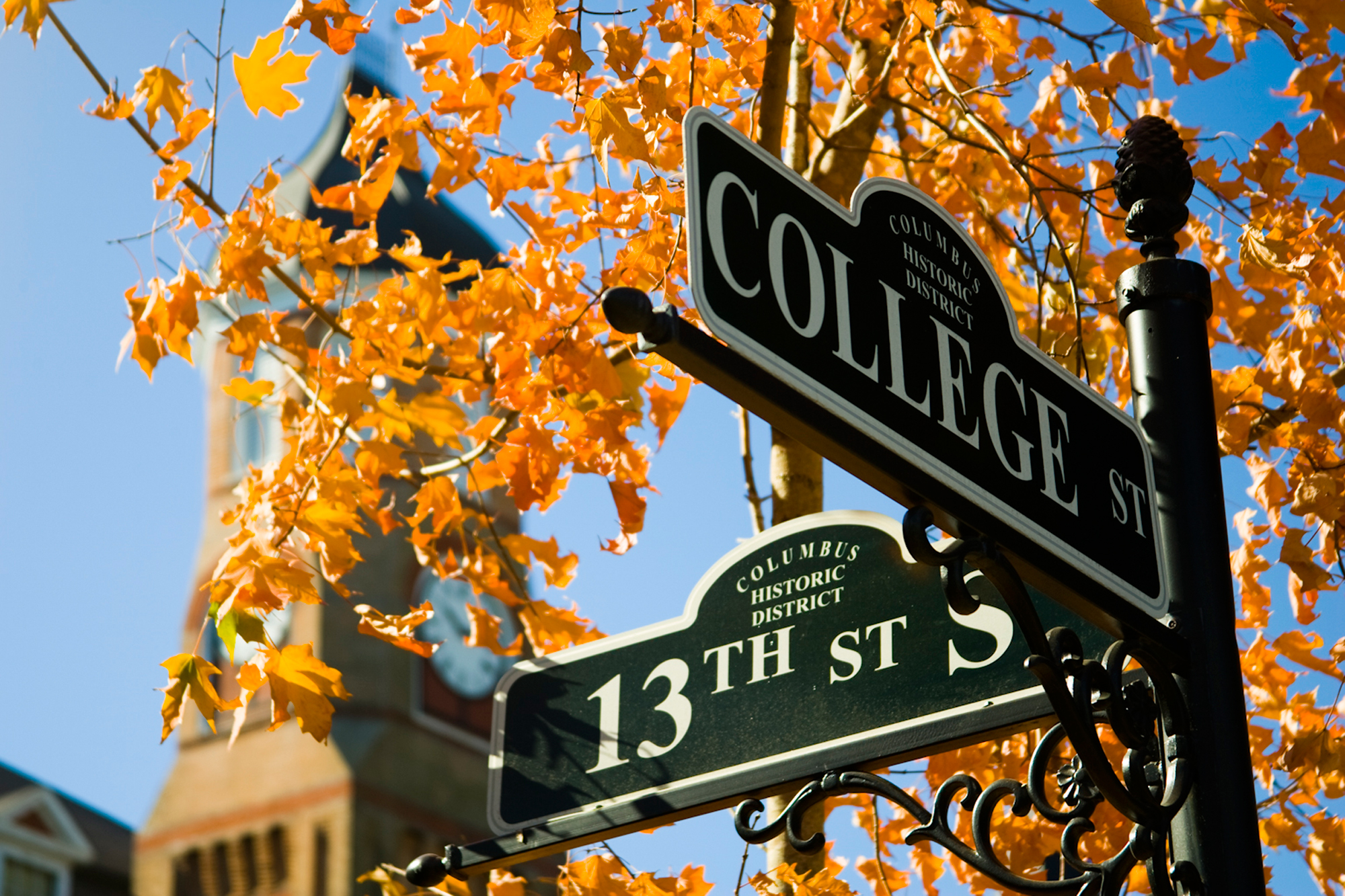 Fall Leaves and Street Sign for College Street