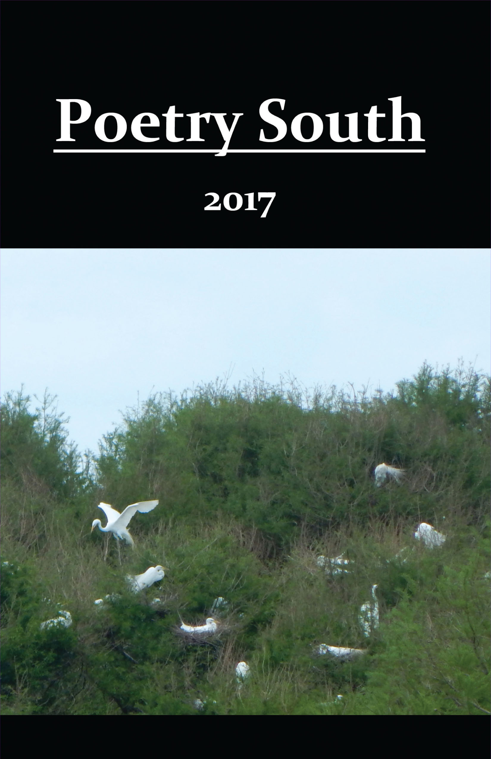 Poetry South 2017 front cover
