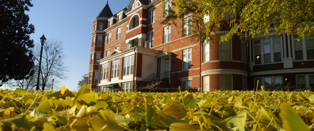 ginkgo leaves falling in front of residence hall