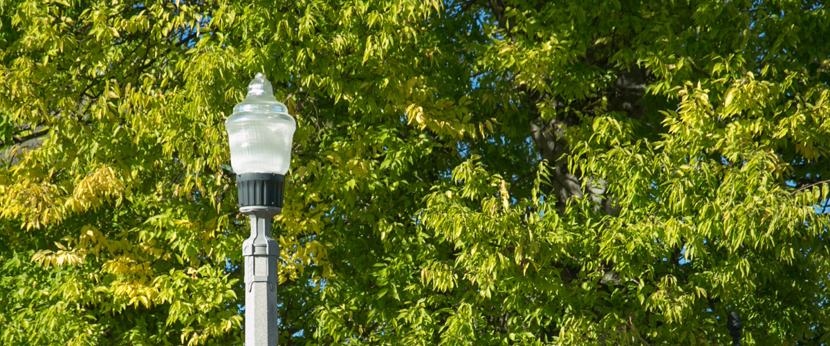 energy efficient street light
