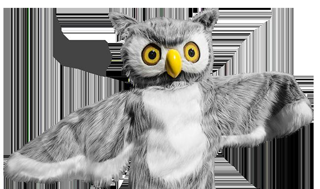 Ody Owl