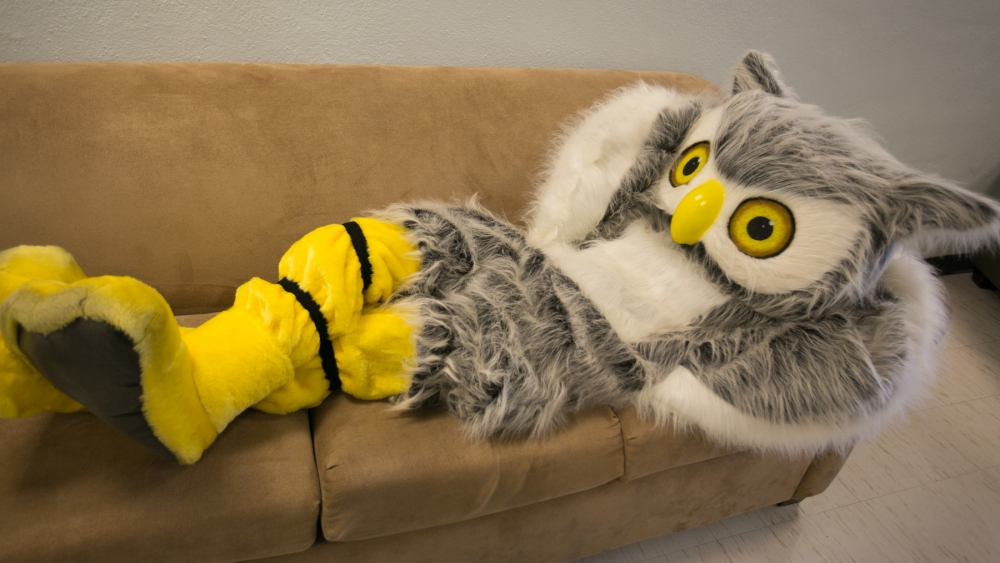 Ody Owl on sofa