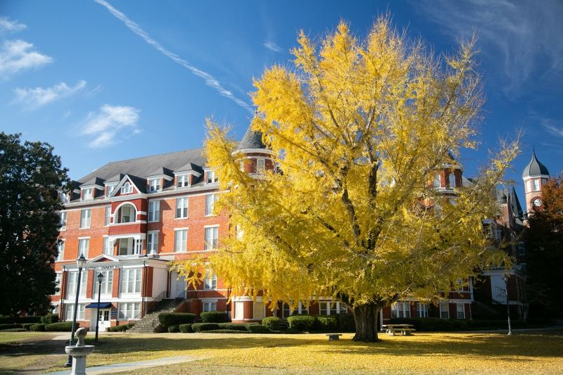 Fall Campus Photo